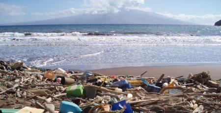 Plastica sulla spiaggia di Laden Beach, Hawaii