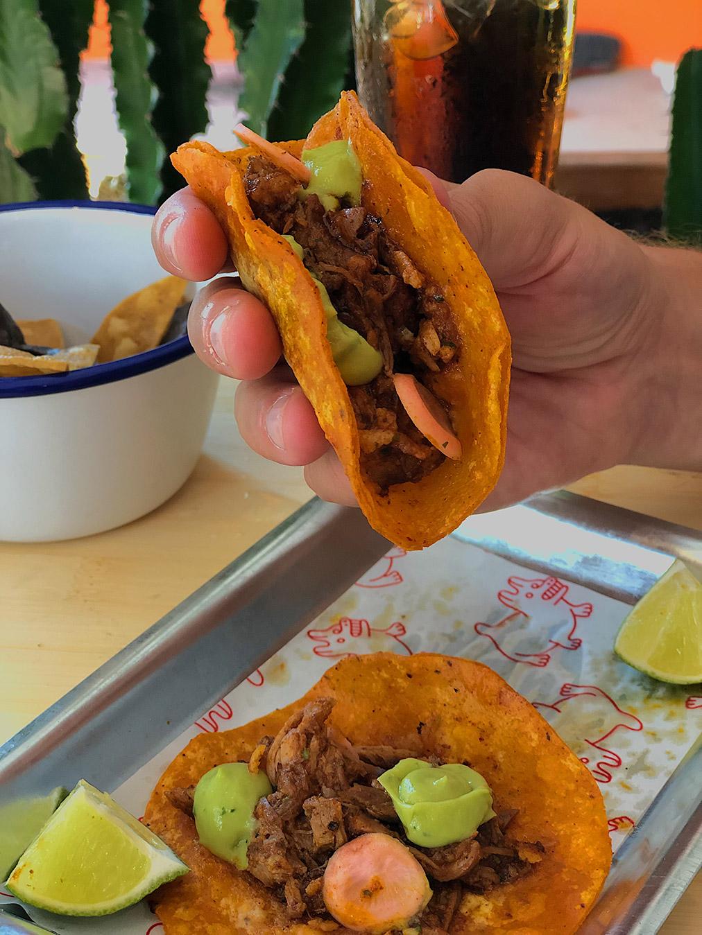 tacos - chihuahua tacos